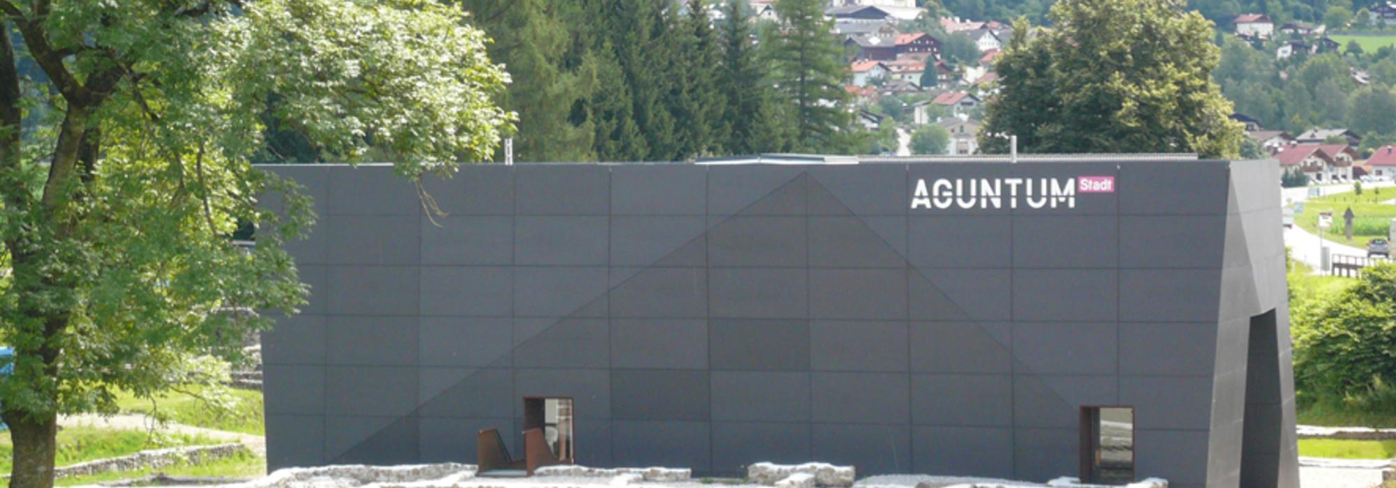 Aguntum | © TVB Osttirol / Aguntum - Verein Curatorium pro Agunto
