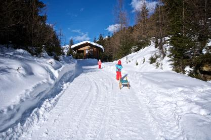 Rodeln Tilliachalmweg, Außervillgraten | © TVB Osttirol / Weitlaner Jakob
