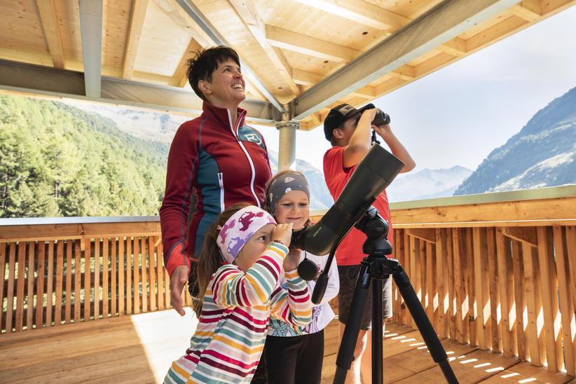 Wildtierbeobachtungsturm Oberhaus   © TVB Osttirol / Nationalpark Hohe Tauern - Waldner Ramona